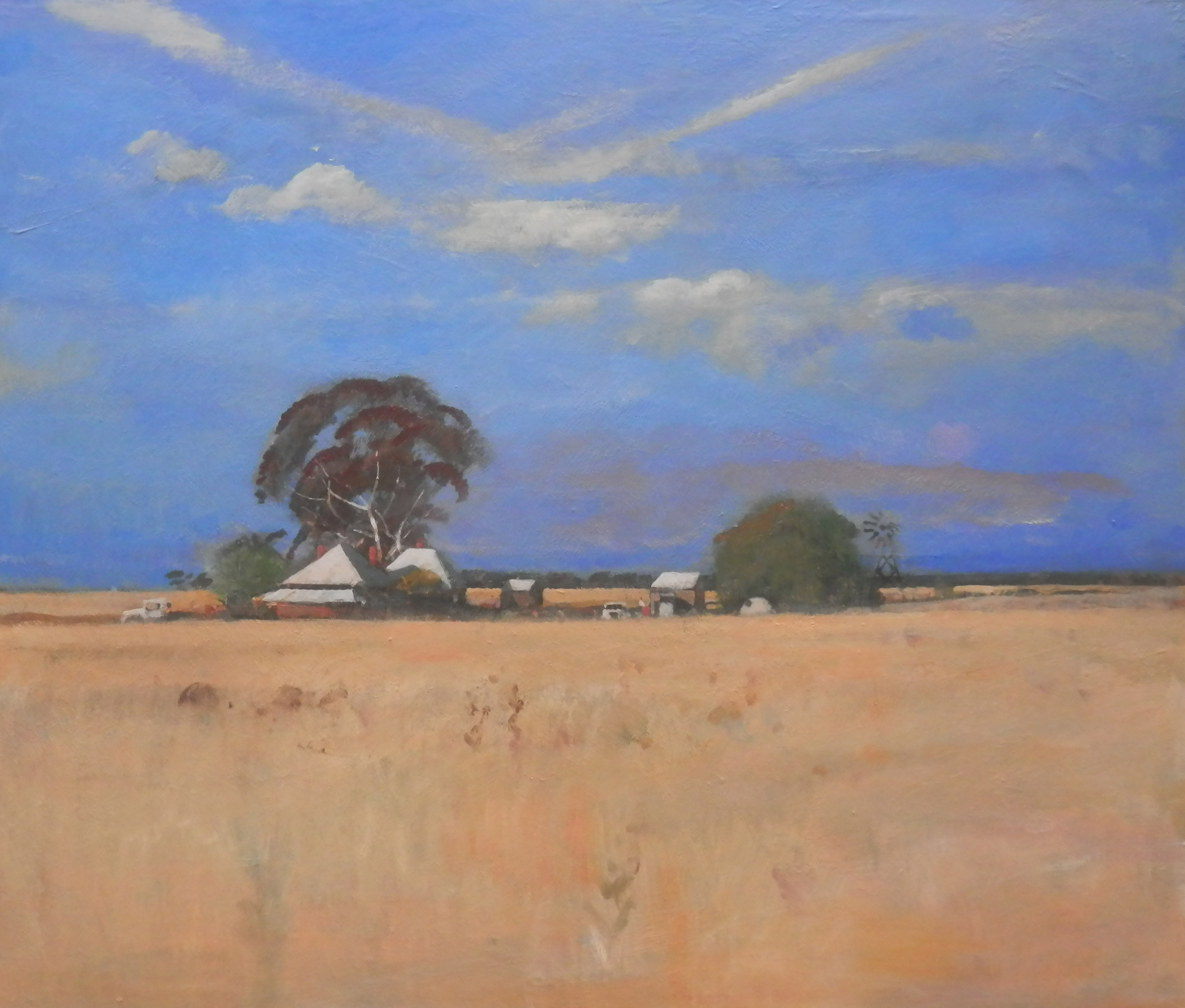 Neville Connor - Fine Arts Studio - Summer evening, Hay plains